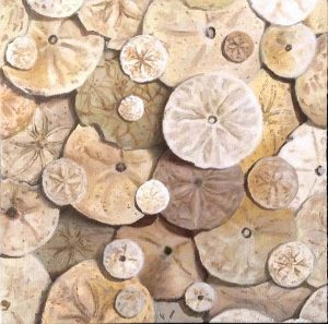Ryan Penney small realistic painting of sand dollars