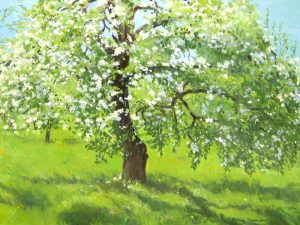 Hilary Baldwin Oil Painting of Apple Blossom Tree in Green Bloom