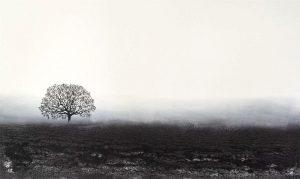 Wendy Shapiro Sustainable Eco Mixed Media Art with Black Tree and Horizon on White Sky