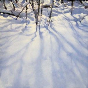 Carol O'Malia Carol Omalia Contemporary Landscape of Winter Snow Shadows of Trees in Forest