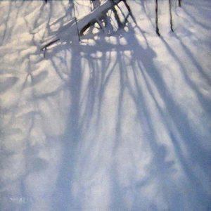Carol O'Malia Carol Omalia Contemporary Landscape of Snow Drift with Tree Branch Shadows