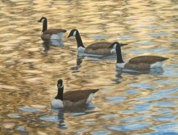 Phil Gidley Oil Painting on Canvas of Geese on Water