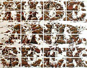 Bev Doolittle - Hide and Seek print of horses and rocks creating words