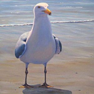 Catherine Raynes - Holding Her Ground - Painting of a seagull on the beach