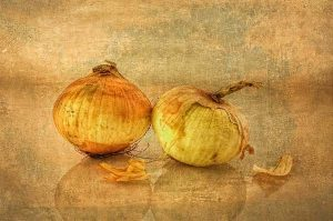 Photograph of 2 onions