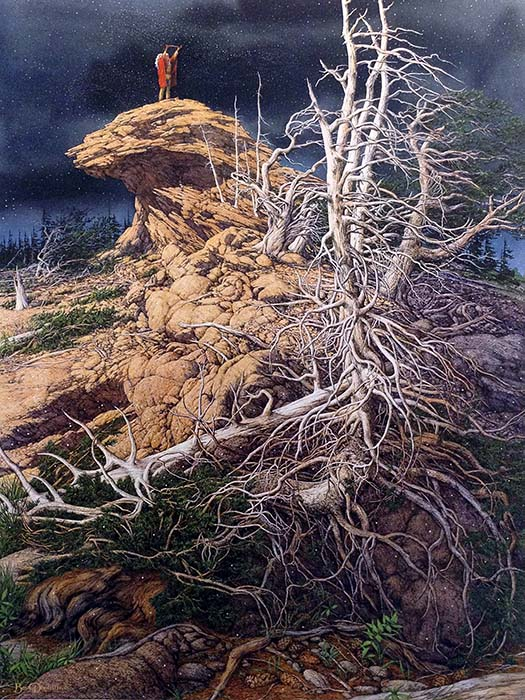 Bev Doolittle - Prayer for the Wild Things print of person standing on rock with white tree and dark sky