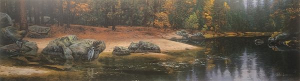 Stephen Lyman - Riparian Riches print of great blue heron standing on the shoreline of a small river