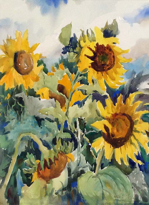Peter Spataro Sunflowers watercolor painting