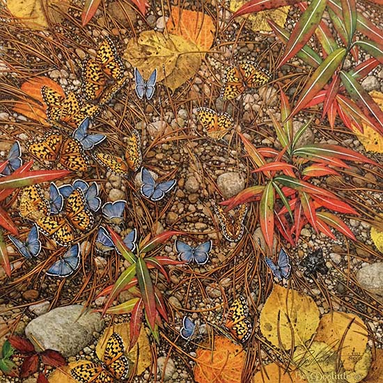 Bev Doolittle - Spirit Takes Flight print of rocks, butterflies, pine needles, and leaves creating a face