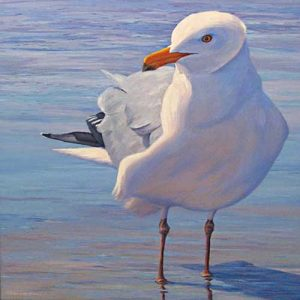 Catherine Raynes - Yeah, I Have Been Working Out - painting of seagull on beach