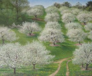 Richard Brady Apple Orchard - Spring (26x31 giclee on canvas)