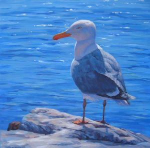 Catherine Raynes acrylic painting of seagull on canvas)