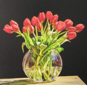 Stephen Rostler - Tulips (24x24 photograph on canvas)