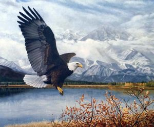 Charles Frace - Wings over America print of bald eagle flying over water with golden plants and a mountain in the clouds