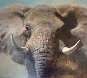 Elephant (24x30 oil on canvas)