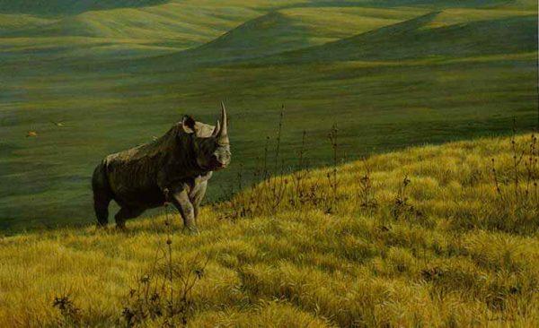 Robert Bateman - Rhino at Ngoro Ngoro (20x32 lithograph on paper)