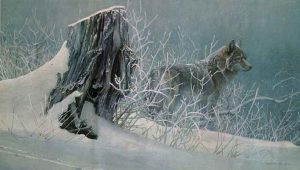 Robert Bateman - Winter Tracker - Coyote (19x32 lithograph on paper)