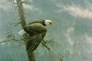 Robert Bateman - The Air