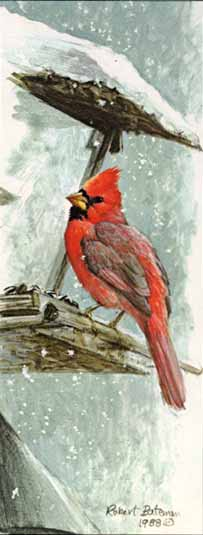 Robert Bateman - At the Feeder - Red Cardinal