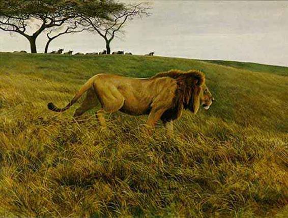 Robert Bateman - Lion and Wildebeest (24x43 lithograph on paper)