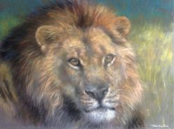 Joel Kirk - Realistic Pastel Painting of Lion's Face