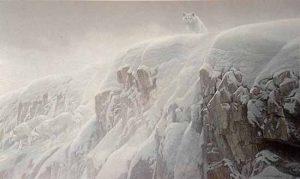 Robert Bateman - Arctic Cliffs print of a white wolf standing atop a snowy cliff edge