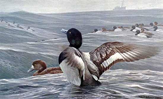 Robert Bateman - Rolling Waves print of sea birds on tumultuous water
