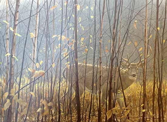Robert Bateman - White Tailed Deer Through the Birches