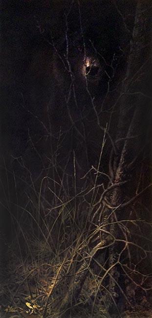 John Seery-Lester - prrint of black wolf hidden in shadow looking straight ahead