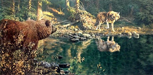 John Seery-Lester - print of bear and wolf meeting eyes across pond in forest