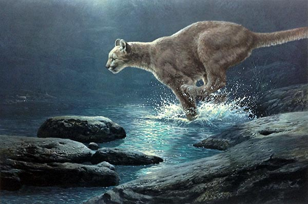 John Seery-Lester - print of panther running through water at night
