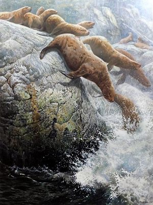 John Seery-Lester - print of sea lions diving into rough water from rocks