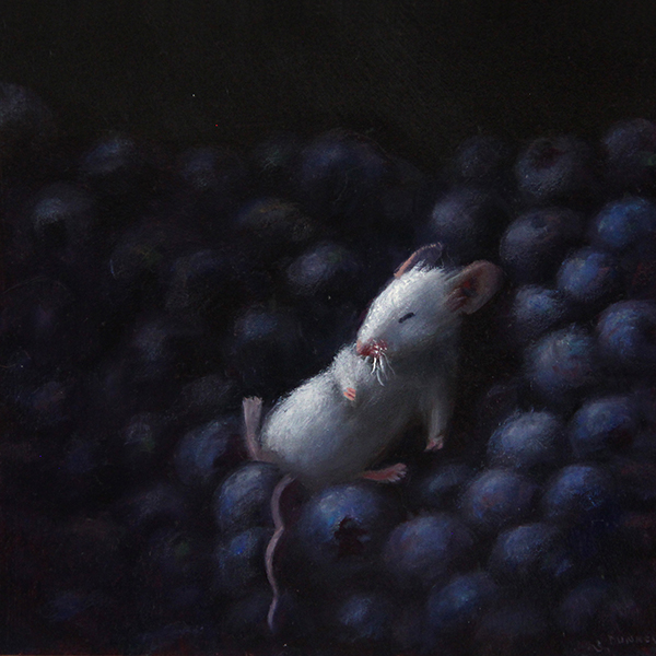 Stuart Dunkel painting of a little white mouse sleeping on a bunch of blueberries