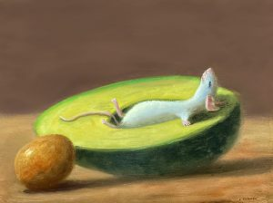 Stuart Dunkel painting of a mouse taking a nap in an avocado
